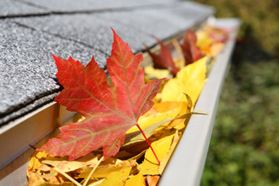 Gutter Cleaning Services In Taylors SC